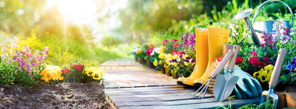 For fun april showers bring may flowers meghan graham mortgage repairing your garden after an extreme winter can take some time and effort but consistency is key to keeping your blooms fresh and full year after year mightylinksfo